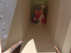 papercup in box