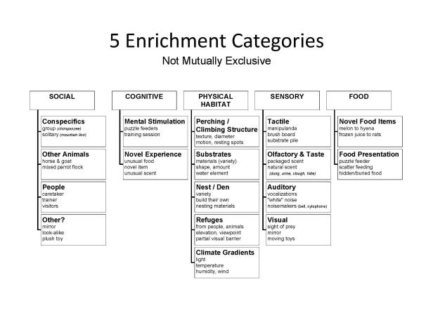 five_categories