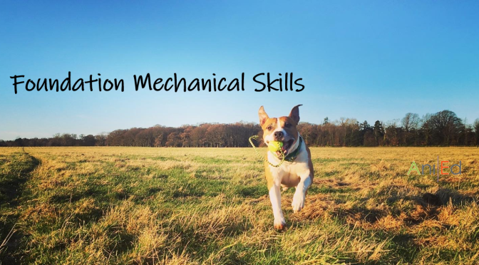 Foundation Mechanical Skills